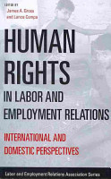 Human Rights in Labor and Employment Relations PDF