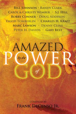 Amazed by the Power of God PDF