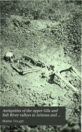 Antiquities of the Upper Gila and Salt River Valleys in Arizona and New Mexico: Issue 35