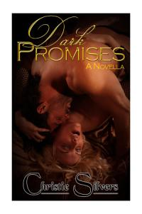 Dark Promises  A Novella Book