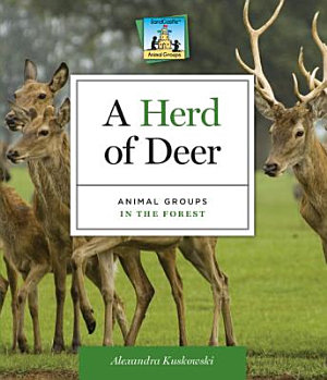 Herd of Deer Animal Groups in the Forest PDF