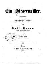 Ein Bürgermeister: geschichtlicher Roman, Band 3