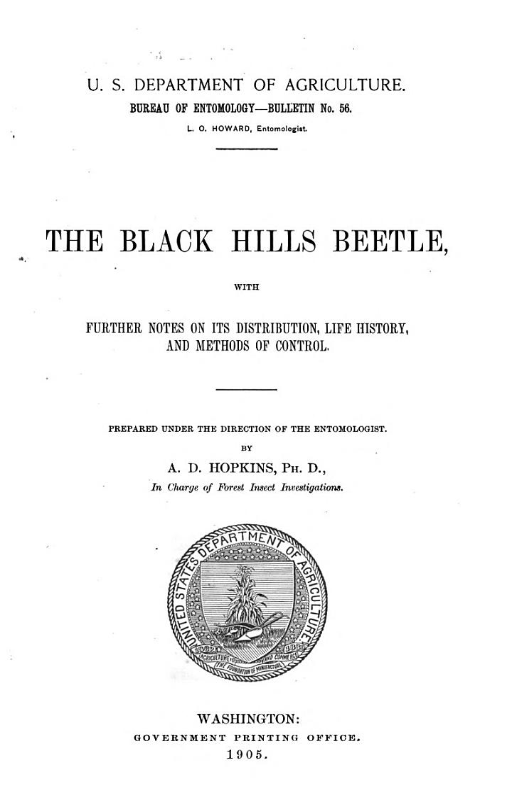 The Black Hills Beetle