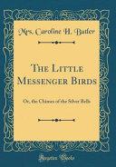 The Little Messenger Birds PDF
