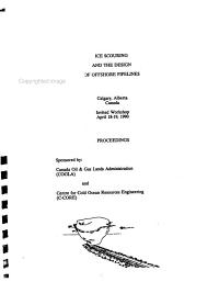 Workshop on Ice Scouring and the Design of Offshore Pipelines  April 18 19  1990 PDF