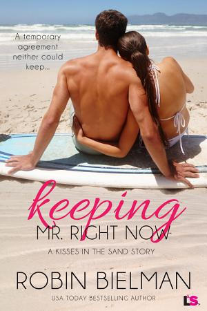 Keeping Mr  Right Now PDF