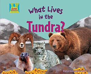 What Lives in the Tundra  PDF