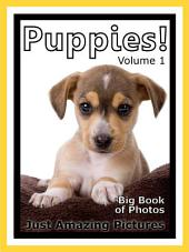 Just Puppies! vol. 1: Big Book of Puppy Dogs Photographs & Dog Pictures