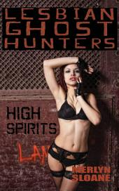 High Spirits (Lesbian Ghost Hunters, #7)