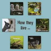 How they live: Learn All There Is to Know About Animals!