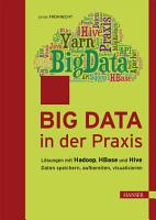 Big Data in der Praxis PDF