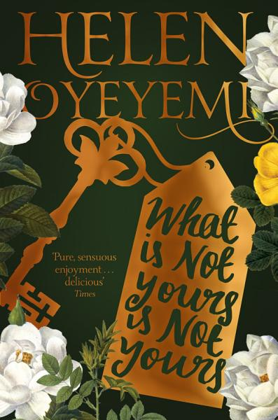 Download What Is Not Yours Is Not Yours Book