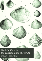 Contributions to the Tertiary Fauna of Florida: With Especial Reference to the Miocene Silex-beds of Tampa and the Pliocene Beds of the Calooshatchie River, Volume 3, Part 6