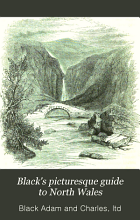 Black s Picturesque Guide to North Wales PDF