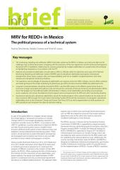 MRV for REDD+ in Mexico: The political process of a technical system