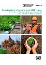 Forest Sector Workforce in the UNECE Region