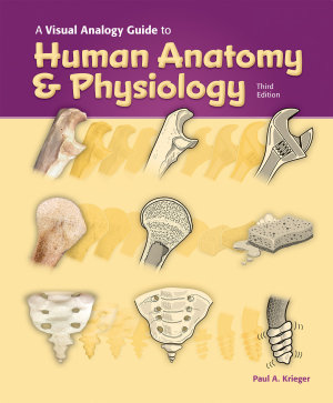 A Visual Analogy Guide to Human Anatomy   Physiology