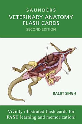 Veterinary Anatomy Flash Cards