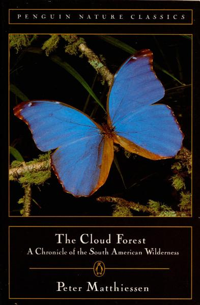 Download Cloud Forest Book