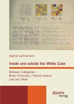 Inside and outside the White Cube. Between Categories - Brian O ?Doherty / Patrick Ireland und sein Werk