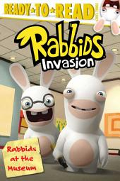 Rabbids at the Museum: with audio recording