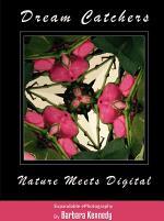 DREAM CATCHERS - Nature Meets Digital