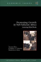 Promoting Growth in Sub-Saharan Africa: Learning What Works