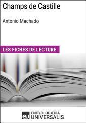 Champs de Castille d'Antonio Machado: Les Fiches de lecture d'Universalis