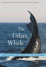 The Urban Whale