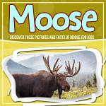 Moose: Discover These Pictures And Facts Of Moose For Kids