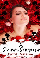A Sweet Surprise : Erotica Sex: (Adults Only Erotica)