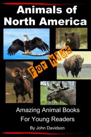 Animals of North America For Kids   Amazing Animal Books for Young Readers PDF