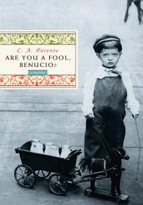 Are You a Fool  Benucio  Book