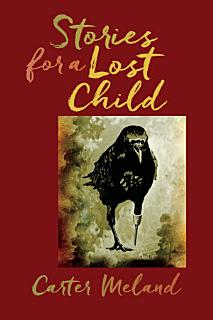 Stories for a Lost Child Book