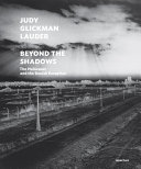 Beyond the Shadows   The Holocaust and the Danish Exception PDF