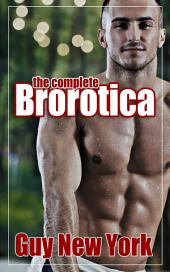 The Complete Brorotica: Fifteen Stories of Straight Men and Gay Sex