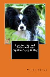 How to Train and Understand Your Papillon Puppy and Dog