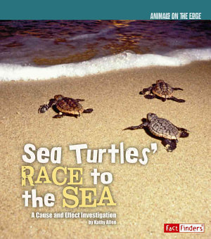 Sea Turtles' Race to the Sea