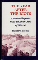 The Year After the Riots PDF