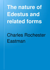 The nature of Edestus and related forms