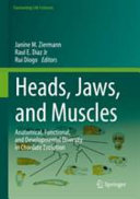 Heads  Jaws  and Muscles