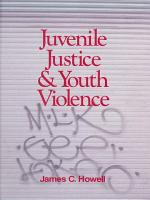 Juvenile Justice and Youth Violence PDF