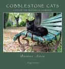 Cobblestone Cats - BA