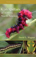 Caterpillars of Eastern North America PDF