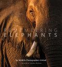 Remembering Elephants