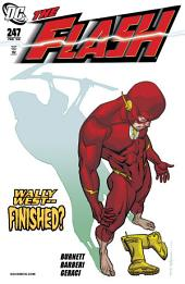 The Flash (1987-2009) #247