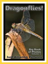 Just Dragonflies! vol. 1: Big Book of Photographs & Dragonfly Pictures