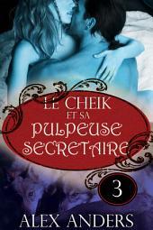 Le Cheik et sa pulpeuse secrétaire 3: (Amour, surnaturel, metamorphe et femme corpulente)