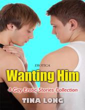 Erotica: Wanting Him, 4 Gay Erotic Stories Collection
