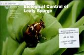 Biological control of leafy spurge